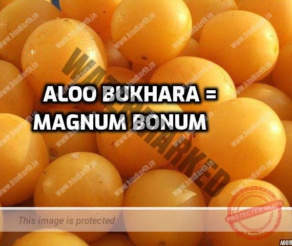 aloo bukhara ko english mein kya kehte hain Magnum bonum ke fayde