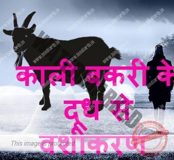 बकरी के दूध से करें प्रचंड वशीकरण goat milk vashikaran